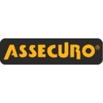 Лента дополнительная ASSECURO к позиционным стропам / CL001